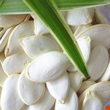 Cheap hulled snow white pumpkin seed kernels wholesale