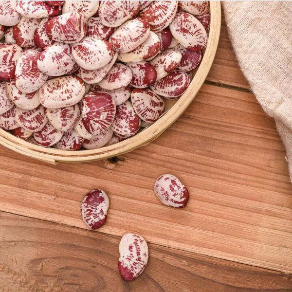 Wholesale Fashion Lotus Bean Bulk Packing Protein Red And White Kidney Bean