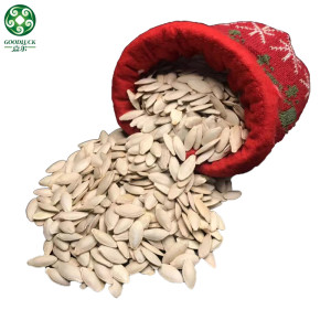 Bulk Lady Nail Roasted Pumpkin Seeds In Shell On Hot Sell Are Cheap