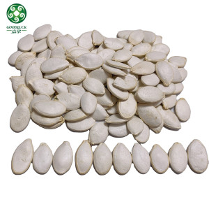 Bulk Raw Organic Snow White Cooking Pumpkin Seeds Are Quality
