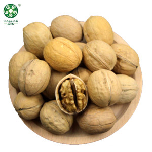 Organic Xin2 Walnuts In Shell With Competitive Price On Hot Sell