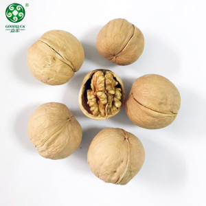 Buy Wholesale Xinguang Walnuts In Shell , Have A Jumbo Size