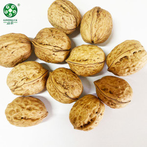 China Xinfeng Walnuts In Shell Walmart Washed And Unwashed