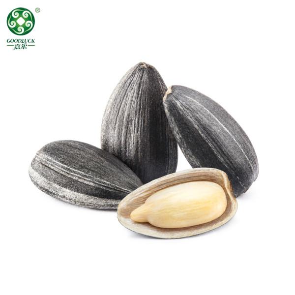 Organic Black Big Sunflower Seeds Nutrition Pesto With Rich Oil