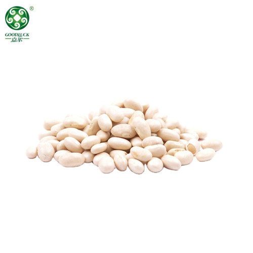 Wholesale White Kidney Beans Of Xinjiang GOODLUCK At Low Price