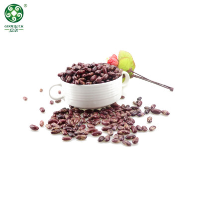 Long Shape Purple Speckled Kidney Beans At Wholesale Price