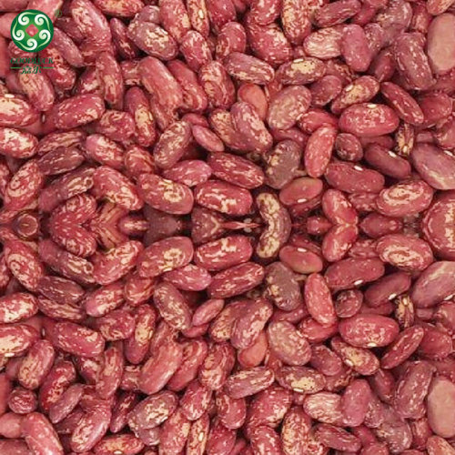 Wholesale 2021 New Crop Chinese Red Speckled Kidney Beans RSKB