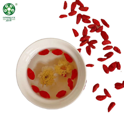 Hot Sale Natural Goji Wolfberry Supplied By Professional Manufacturer