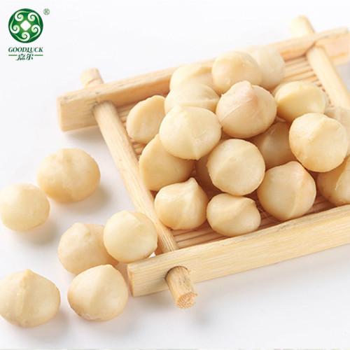 Factory Bulk Fresh  Vacuum Carton Natural Creamy Tasty Macadamia Nuts