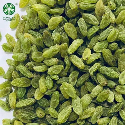 Wholesale Green Raisins Dried Fruit Worldwide Bulk Supply From China