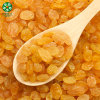 Golden Raisins Supplied By Manufacturer Have A Wholesale Price