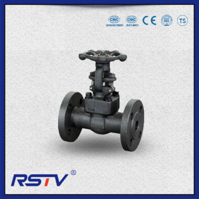 Forged Steel Rising Stem Flange Gate Valve