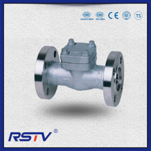 Forged Steel Flange Check Valve
