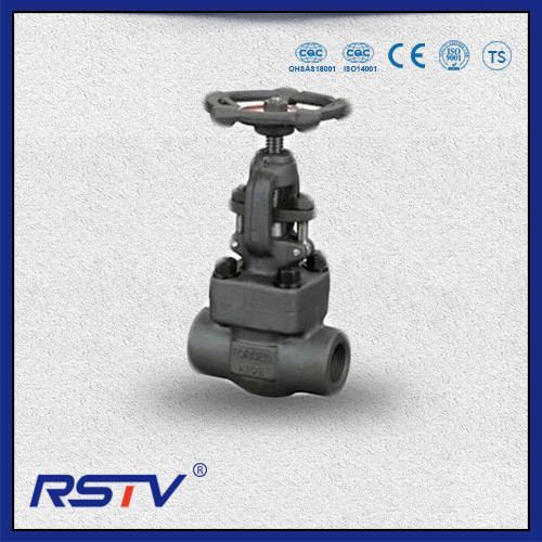 Forged Steel Bolted Bonnet Gate Valve