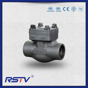 Forged Steel Swing type/Lift type Check Valve