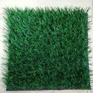 Thiolon Football Grass