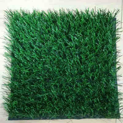 Thiolon Football Grass