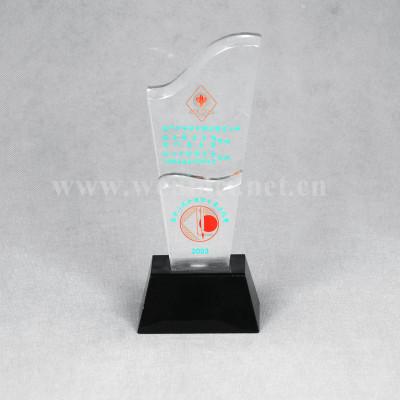 Customized  Acrylic Awards Acrylic Trophy