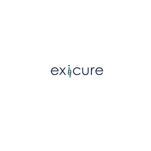 Exicure anuncia datos preclínicos que respaldan el desarrollo de la tecnología SNA en el sistema nervioso central