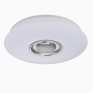 Led Ceiling light with bluetooth speaker