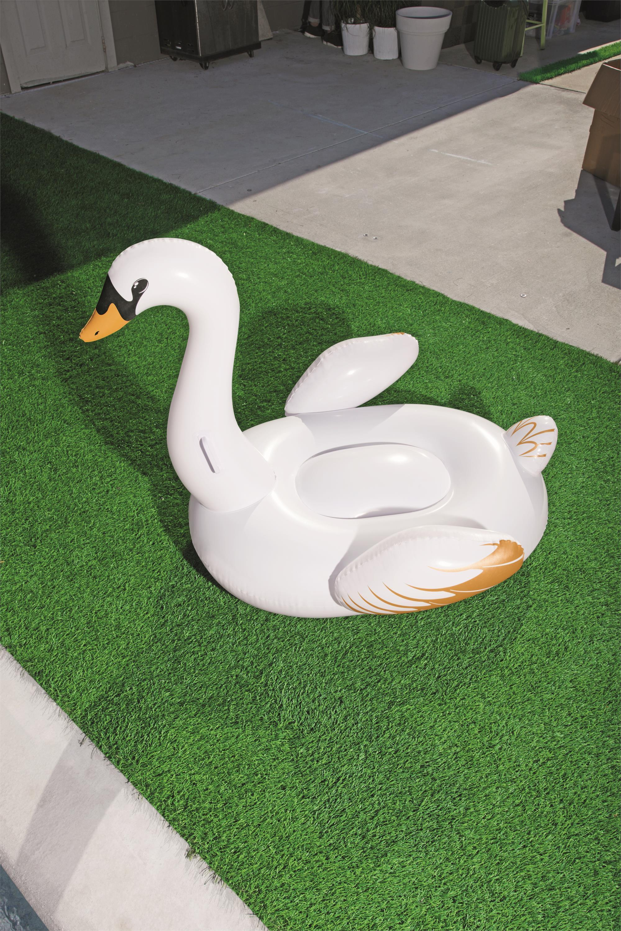 Little swan mount