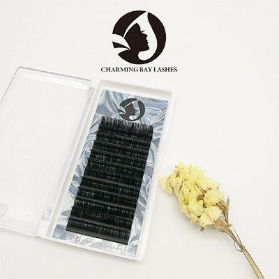 5d private label 0.07mm individual silk 3d eyelash extensions prices
