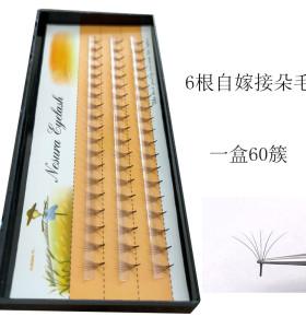 稻草人自己嫁接假睫毛自然嫁接睫毛0.07粗6P单株单簇种植朵毛眼毛