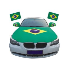Hot Sale Custom Logo Car Flag For Advertising With Plastic Pole