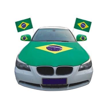Hot Sale Custom Logo Car Flag For Advertising With Plastic Pole