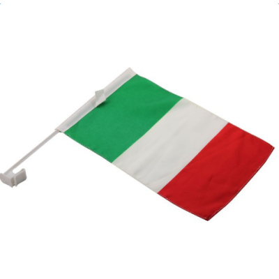 Custom printing 100%polyester car flags with plastic pole