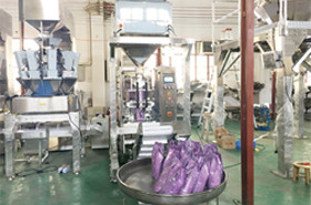 linear weigher vertical packing line