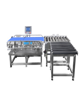 10-50kg Case Bulk Box Check Weigher Automactic Weigh Checker 20kg Checkweigher Machine