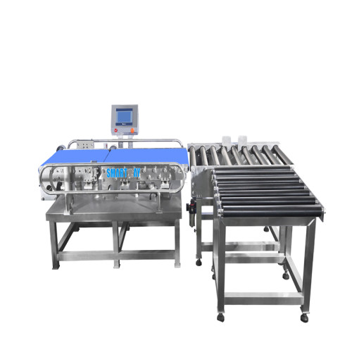 10-50kg Case Bulk Box Check Weigher Automactic Weigh Checker 20kg Checkweigher Machine
