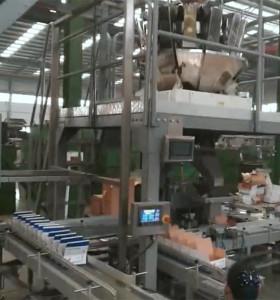 Bolt nut hardware screw box bag weighing filling packing machine nail packing machine