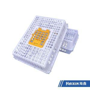 Haixin Vacuum Casting Plastic/Turnover Plastic Duck/Chicken/Pigeon Basket Transport