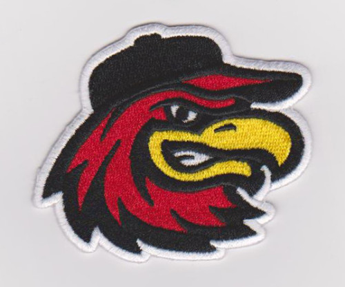 Embroidery service custom owl animal logo 100% machine embroidery patches