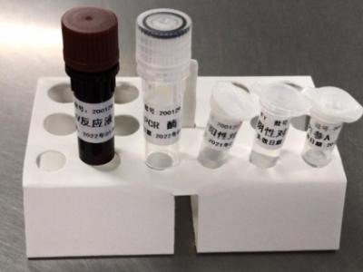 Kit de detección de ácido nucleico 2019-nCoV
