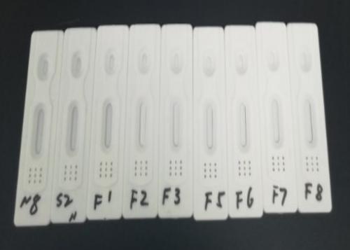 الكشف السريع عن الأجسام المضادة لـ IgM / IgG لـ SARS-CoV-2 (COVID-19)