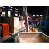 PVC WPC profile extrusion line