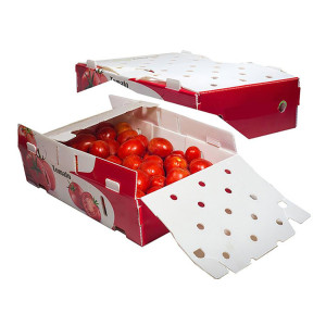 Waterproof reusable fruits packing and turnover PP Plastic Packing Box Manufacturing Machine