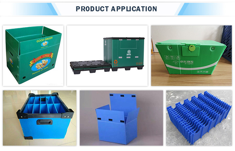 Tongsan PP box production line
