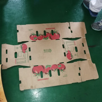 Good quality plastic corrugated sheet  four color printing macine for box making