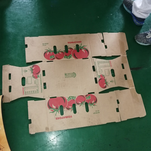 plastic hollow corrugated board  three color printer for boxes making