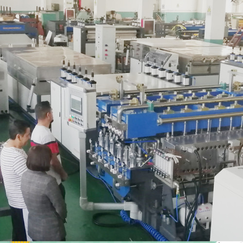 Mxico customer visit our company for PP hollow corrugated sheet making machine testing