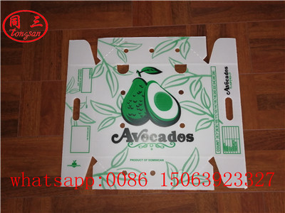 PP  hollow board turnover box application of fruit transportation