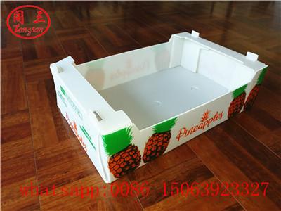Fruit packing box