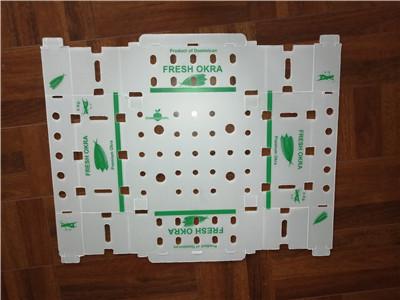 PP hollow sheet after cutting