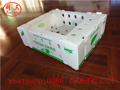High quality  pp hollow sheet packing box