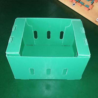 PP hollow sheet packing box