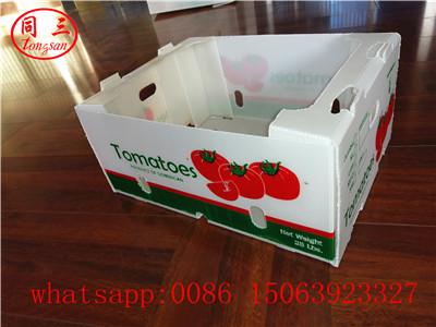 Corrugated box sample